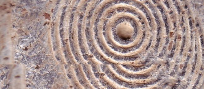 Знак препознавања: Дупли кругови...